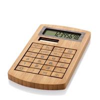 Calcolatori Eco